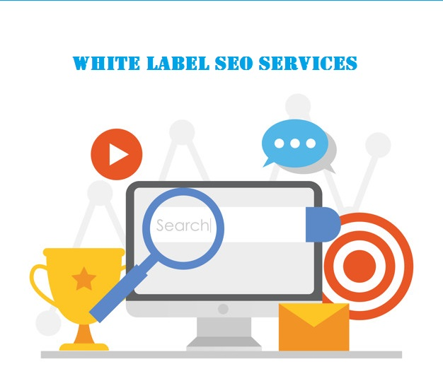 Why Your Web development Firm should use White label SEO services to  improve your revenue? - Demanzo